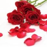 恋愛の願い事でロードナイトは恋愛でストレス解消のパワーストーン